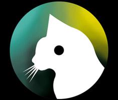 release_cat001
